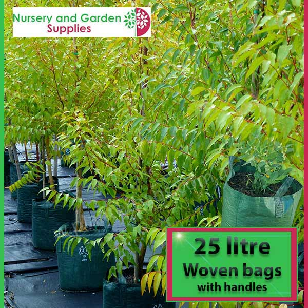 25 litre woven planter bag tree bag at Nursery and Garden Supplies NZ - for more info go to nurseryandgardensupplies.co.nz