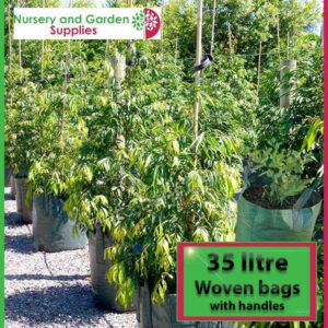 35 litre woven planter bag tree bag at Nursery and Garden Supplies NZ - for more info go to nurseryandgardensupplies.co.nz