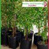 10 litre Standard Poly Planter Bags PB18 at Nursery and Garden Supplies NZ - for more info go to nurseryandgardensupplies.co.nz