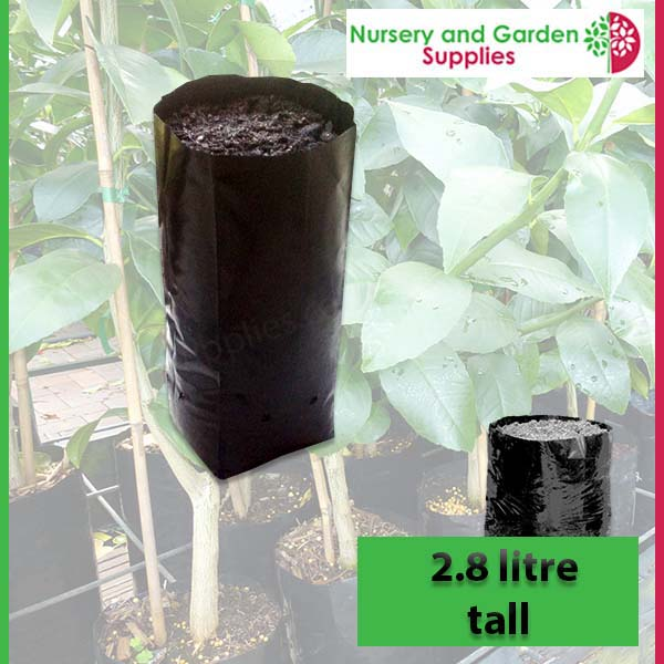 2.8 litre Tall Poly Planter Bags at Nursery and Garden Supplies NZ - for more info go to nurseryandgardensupplies.co.nz