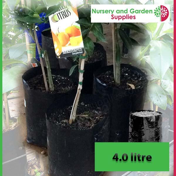 4 litre Poly Planter Bags at Nursery and Garden Supplies NZ - for more info go to nurseryandgardensupplies.co.nz