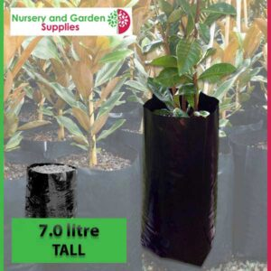 7 litre Tall Poly Planter Bags at Nursery and Garden Supplies NZ - for more info go to nurseryandgardensupplies.co.nz
