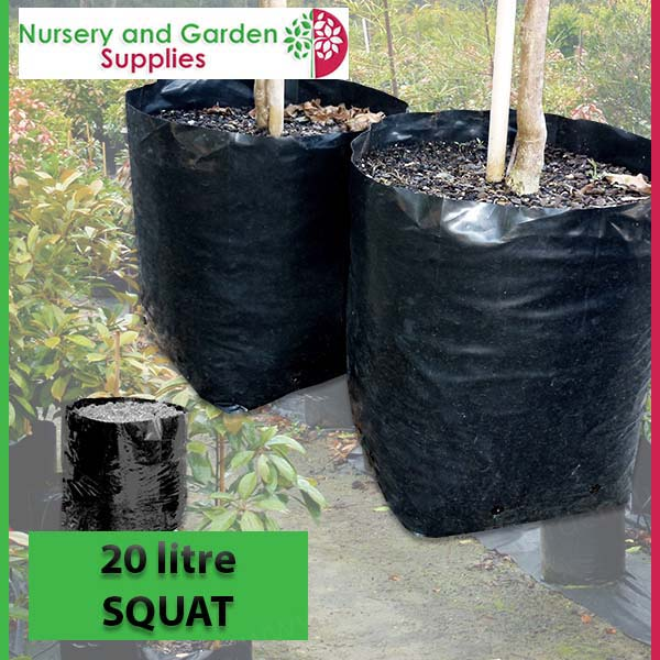 20 litre Squat Poly Planter Bags at Nursery and Garden Supplies NZ - for more info go to nurseryandgardensupplies.co.nz