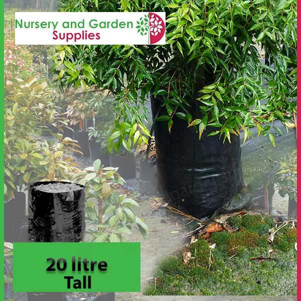 20 litre Tall Poly Planter Bags at Nursery and Garden Supplies NZ - for more info go to nurseryandgardensupplies.co.nz