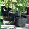 60 litre Squat Poly Planter Bags at Nursery and Garden Supplies NZ - for more info go to nurseryandgardensupplies.co.nz