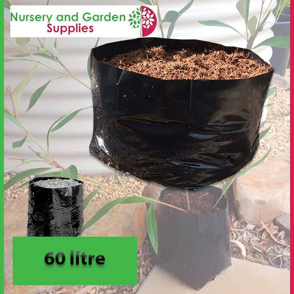 60 litre Squat Poly Planter Bags at Nursery and Garden Supplies NZ - for more info go to nurseryandgardensupplies.co.nz