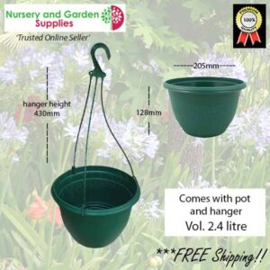 200mm Hanging Basket Green saucerless at Nursery and Garden Supplies NZ - for more info go to nurseryandgardensupplies.co.nz