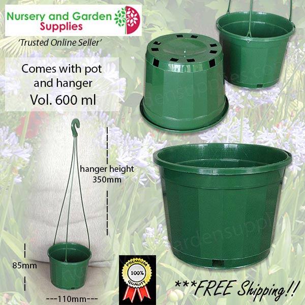 115mm Hanging Basket Pot Green at Nursery and Garden Supplies NZ - for more info go to nurseryandgardensupplies.co.nz