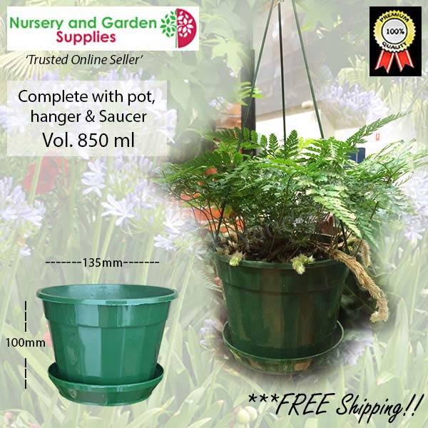 140mm Hanging Basket Pot Hanger Saucer Green at Nursery and Garden Supplies NZ - for more info go to nurseryandgardensupplies.co.nz