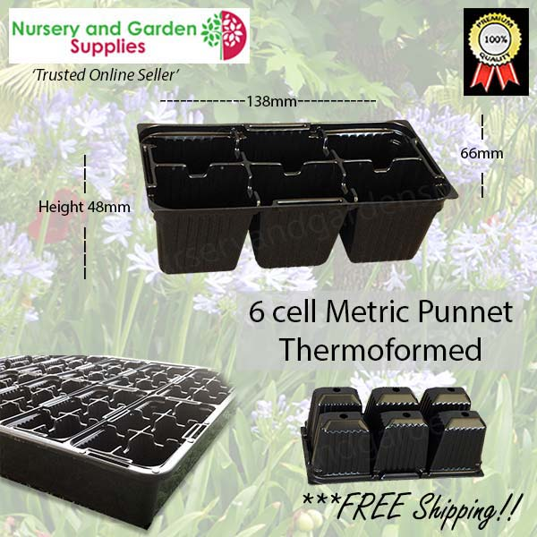 6 cell Thermoformed Seedling Punnet Metric at Nursery and Garden Supplies NZ - for more info go to nurseryandgardensupplies.co.nz