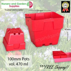 100mm Square Squat Punnet-Pot Red - for more info go to nurseryandgardensupplies.com.au