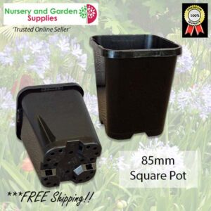 85mm Square plant pot black - for more info go to nurseryandgardensupplies.co.nz