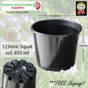 125mm Squat Plant Pot