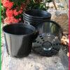 125mm Squat Plant Pot
