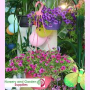 200mm-Saucerless-Hanging-basket-Purple-9.jpg