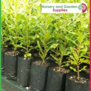 Poly-10-litre-Tall-Plant-bags-NG-2