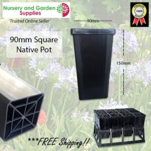 90mm Square Native Pot
