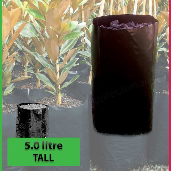 5 litre Tall Poly Planter Bags at Nursery and Garden Supplies NZ - for more info go to nurseryandgardensupplies.co.nz