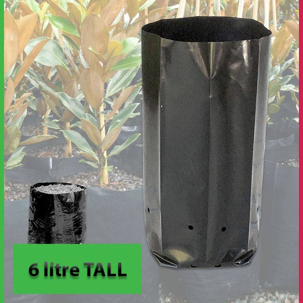 6 litre Tall Poly Planter Bags at Nursery and Garden Supplies NZ - for more info go to nurseryandgardensupplies.co.nz
