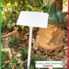 250mm White Display Plant Label - for more go to nurseryandgardensupplies.co.nz