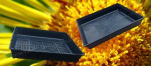 Plant Cell trays & Carry Trays Category - Nursery and Garden Supplies NZ - for more info go to nurseryandgardensupplies.co.nz