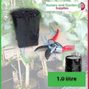 1 litre Poly Planter Bags at Nursery and Garden Supplies NZ - for more info go to nurseryandgardensupplies.co.nz