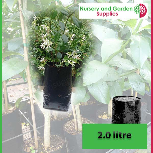 2 litre Poly Planter Bags PB3 at Nursery and Garden Supplies NZ - for more info go to nurseryandgardensupplies.co.nz