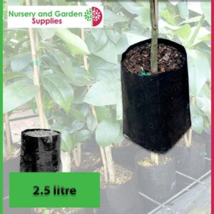 2.5 litre Poly Planter Bags at Nursery and Garden Supplies NZ - for more info go to nurseryandgardensupplies.co.nz