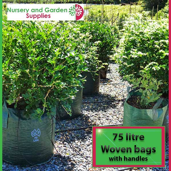 75 litre woven planter bag tree bag at Nursery and Garden Supplies NZ - for more info go to nurseryandgardensupplies.co.nz