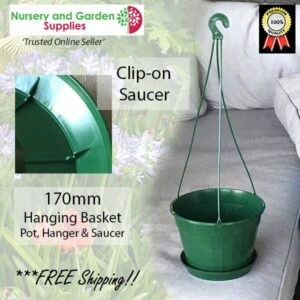 170mm Hanging Basket Pot Green at Nursery and Garden Supplies NZ - for more info go to nurseryandgardensupplies.co.nz