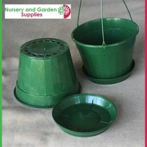 170mm Hanging Basket Pot Green at Nursery and Garden Supplies - for more info go to nurseryandgardensupplies.com.au