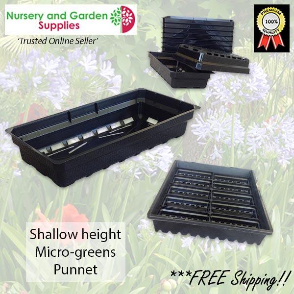 Microgreens Seedling Metric Grow Punnet at Nursery and Garden Supplies NZ - for more info go to nurseryandgardensupplies.co.nz