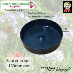 Saucer to suit 125mm - for more info go to nurseryandgardensupplies.co.nz
