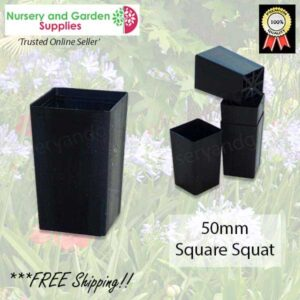 50mm Square Squat tube