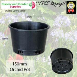 150mm ORCHID Squat Pot Heavy Duty