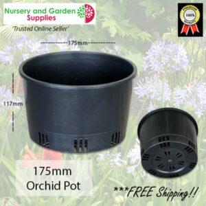 175mm ORCHID Squat Pot Heavy Duty