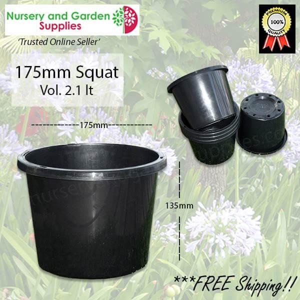 175mm Squat Plant Pot
