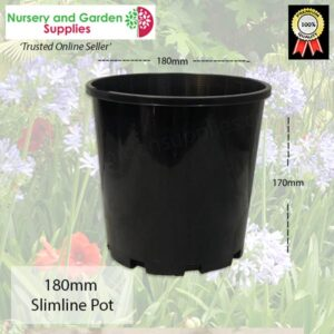 180mm Slimline Pot Black