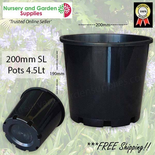 200mm Plastic Plant Pot 8″ Standard Height
