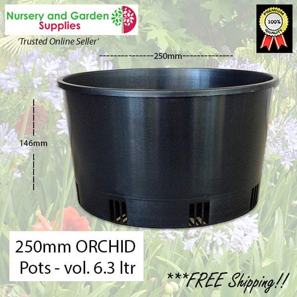 250mm ORCHID Squat Pot Heavy Duty