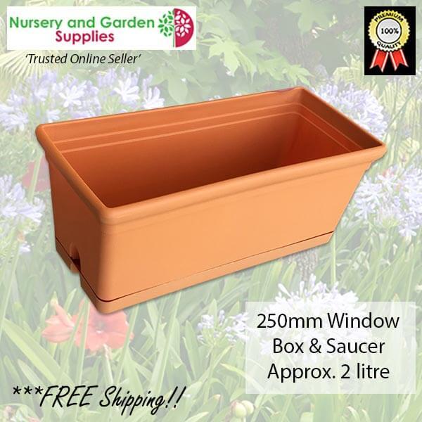 250mm Window Box and Saucer