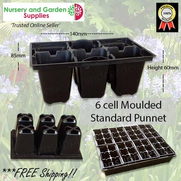6 Cell Moulded Punnet Standard
