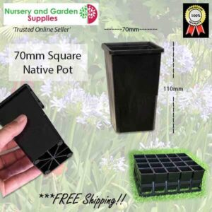 70mm Square Native Pot