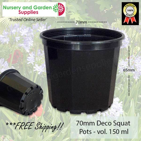 70mm Decorative Plant Pot