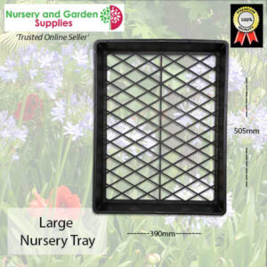 Large Nursery Tray