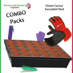 55mm Cactus Succulent Combo Pack