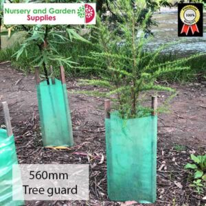 560mm Treeguard