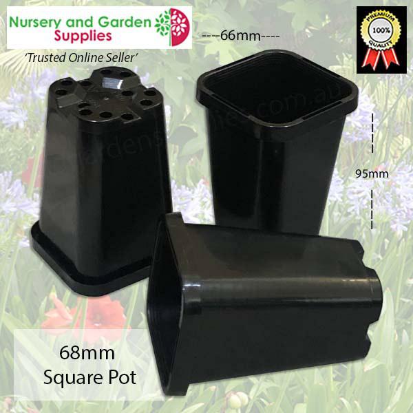 68mm Square Pot